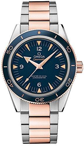 Omega Seamaster 233.60.41.21.03.001