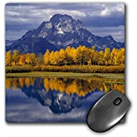 3D Rose Wyoming Grand Teton Np Fall Aspen Oxbow BendUs51 Rer0012Ric Ergenbright Matte Finish Mouse Pad - 8 x 8 - mp_97538_1