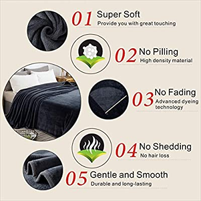 Richave Fleece Queen Size Blanket for Fall Winter Spring All Season 350GSM Lightweight Throw for The Bed Extra Soft Brush Fabric Summer Autumn Warm Sofa Blanket 90