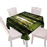 Everyday Kitchen Tablecloth duitable All Occasions,(W60 x L60) Farm House Decor Scenery Sunbeams