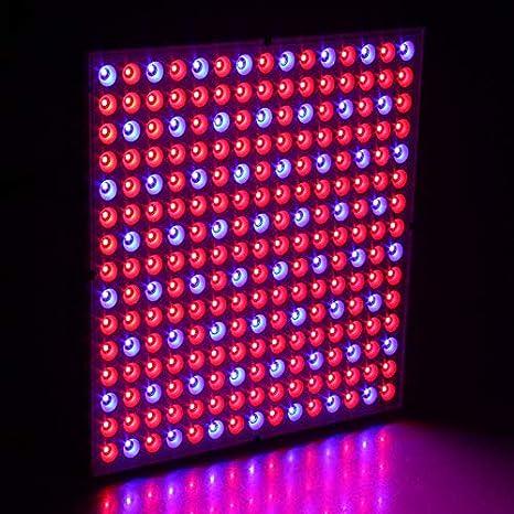 Hengda 15W LED L/ámpara de Planta Luz de Planta Plantas de Interior L/ámpara de Crecimiento Plantas hidrop/ónicas Luz de Crecimiento Espectro Completo 225 LED Rojo y Azul Luminarias de Crecimiento