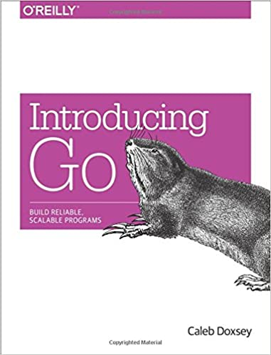 Introduction to Programming in Go: A Developer Resource