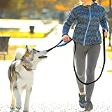#4: RABBITGOO Heavy Duty Dog Leash 6 ft 2 Handles, Large Dog Leash Reflective for Medium Large Dogs, Nylon Leash with Double Traffic Padded Handles for Extra Comfort and Control, Durable Black Dog Leash