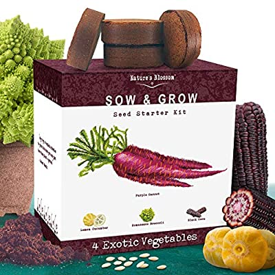 Nature's Blossom Exotic Vegetables Growing Kit. 4 Unique Plants To Grow From Seed. Beginner Gardeners Starter Set To Start Your Own Unusual Home Veg Garden. Gardening Project For Kids and Adults : Garden & Outdoor