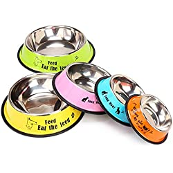 Stainless Steel Dog Bowl Sport Travel Pet Dog Cat Food Feeder Outdoor Drinking Water Fountain Pet Feeding Tool Cartoon Style Orange with Cartoon S