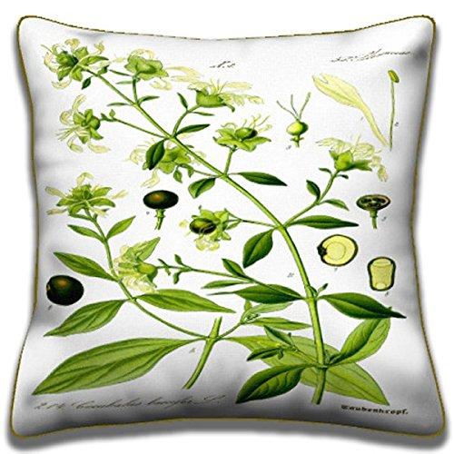 Amazon Com Berry Bearing Catchfly Botanical Pillows Collection