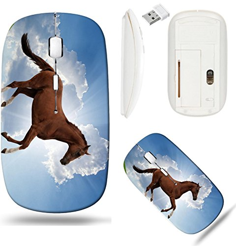 (Liili Wireless Mouse White Base Travel 2.4G Wireless Mice with USB Receiver, Click with 1000 DPI for notebook, pc, laptop, computer, mac book ID: 22621561 Peaceful background brown horse running on gr)