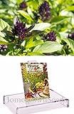 Homegrown Basil Seeds, 1000 Seeds, Organic Thai Basil