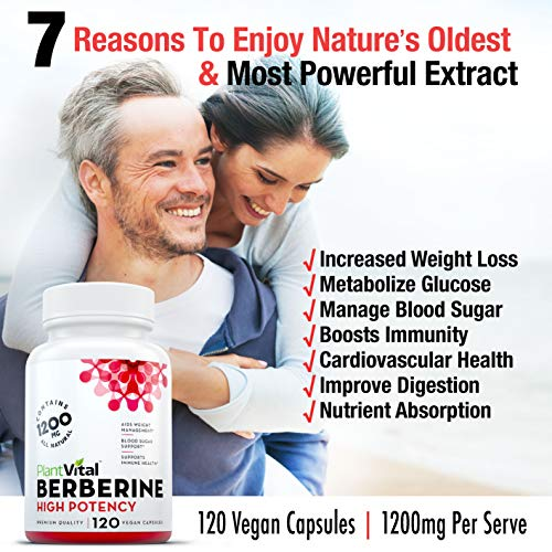 New Berberine 1200mg Supplement HIGH Potency . 100 Pure, Aids Weight Loss, Boosts Immune System, Blood Sugar Stabilizer, Glucose Metabolism Cardiovascular Health. Vegan, Non-GMO 2 Pack