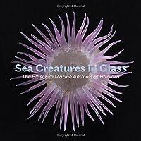 Sea Creatures in Glass: The Blaschka Marine Animals at Harvard