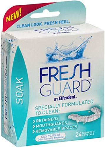 Efferdent Fresh Guard Soak Crystals Packets 24 Each (Pack of 10)
