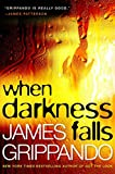 When Darkness Falls (Jack Swyteck Novel)