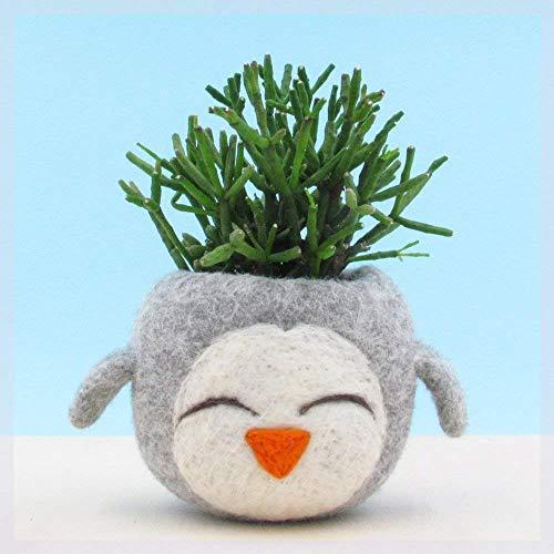 Felt succulent planter/grey vase/happy penguin/cactus planter/mini planter/nursery decor/gift for her/Choose your color!