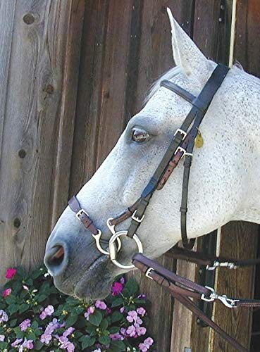 Nunn Finer Kineton English Leather Noseband
