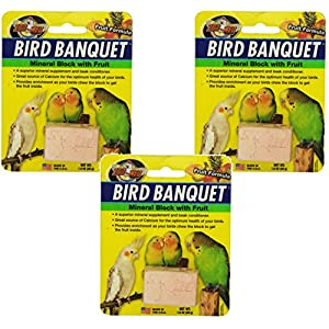 Zoo Med Laboratories Bird Banquet Fruit Mineral Blocks, Small (3 Pack) 6
