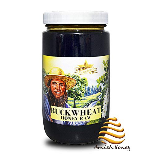 Goshen Honey Amish Extremely Raw Buckwheat Honey 100% Natural Domestic Dark Honey Health Benefits Unfiltered Unprocessed Unheated OU Kosher Certified | 1 Lb Glass Jar (Organic Canadian Raw Honey)