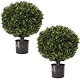 "artificial evergreen bushes - LIMITED TIME LOW PRICE FOR FIRST TIME ON AMAZON | 24"" Tall 16"" Round Artificial Topiary Ball Boxwood Trees (Set of 2) by Seven Oaks 