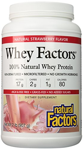 Natural Factors - Whey Factors, 100% Natural Whey Protein, Strawberry, 17 Servings (12 oz) - 100% Whey Natural Strawberry