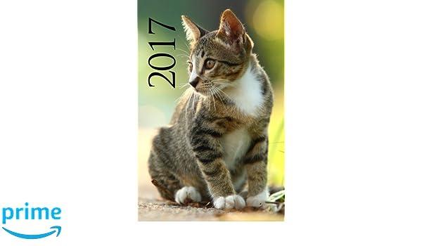Agenda 2017 (Gatos) (Spanish Edition): Gatos: 9781539679219 ...