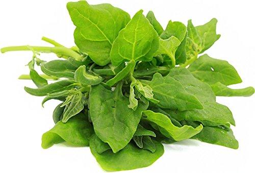 1 Spinach Seeds Ounce (1 Ounce Seeds Spinach)