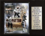 NFL Walter Payton Chicago Bears Career Stat Plaque