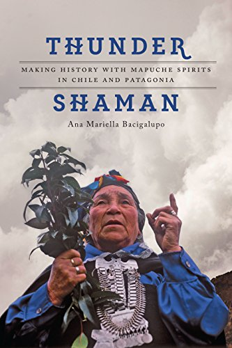 ?VERIFIED? Thunder Shaman: Making History With Mapuche Spirits In Chile And Patagonia. talking before Grades manteca poblizu general Module