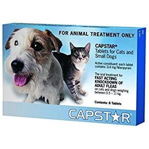 Capstar® for Small Dogs and Cats 0.5-22kg (Blue) – 6 Pack Click on image for further info.