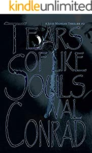 Tears of Like Souls (A Julie Madigan Thriller Book 2)