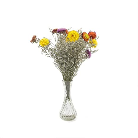 Amazon Com Meen Eternal Flower Fresh And Elegant Lover Grass Colorful Small Daisy Dried Flower Bouquet Eternal Flower Contains Vase Home Furnishings Home Kitchen