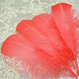 50 Pcs Loose Goose Feather Colorful Real Feather Hand Crafted Fluffy Plume for Wedding Party Photo Prop Millinery and Hat Trimming Coral Color