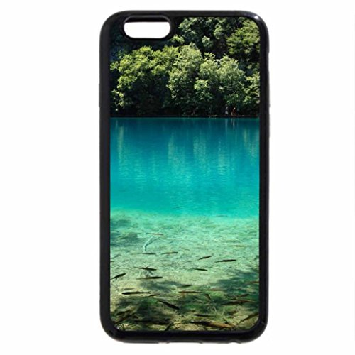 iPhone 6S / iPhone 6 Case (Black) Clarity and beautiful