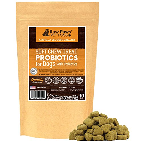 Best Dry Dog Food For Constipation