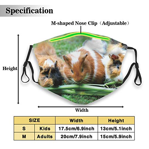 Guinea Pig Sea Pig House Anti Dust Mouth Cover Respirator Dustproof Washable Reusable Protective Breath Windproof Mask with Filter M