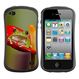 LASTONE PHONE CASE / Suave Silicona Caso Carcasa de Caucho Funda para Apple Iphone 4 / 4S / Anthurium Red Green Nature