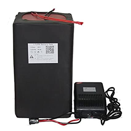 48 V 50 Ah de litio LiFePO4 Batería Power Pack + BMS 5 un ...