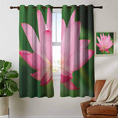 (petpany Blackout Curtain Panels Window Draperies Pink,Flower Theme Nature Inspired Beautiful Lotus Lily Blossom Romantic Digital, Pink and Fern Green,for Bedroom, Kitchen, Living Room 42