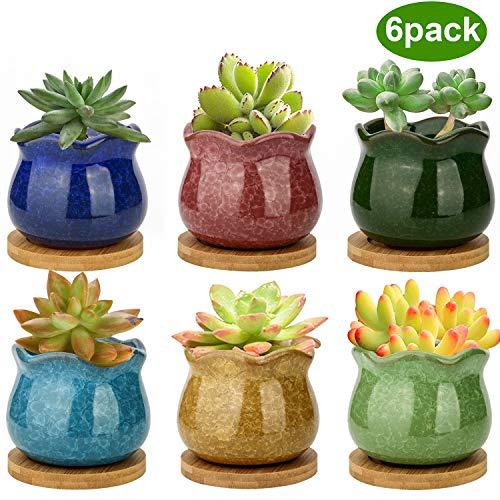 ZOUTOG Succulent Pots 3.9