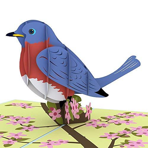 Lovepop Bluebird 3-D Pop-Up Greeting Card ()