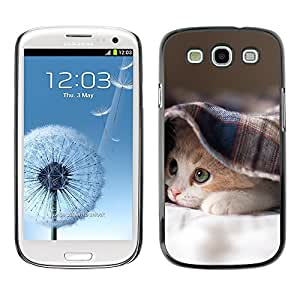Hot Style Cell Phone PC Hard Case Cover // M00100412 sleepy kitten animals // Samsung Galaxy S3 i9300