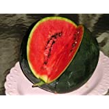 Red Supply Solution Sugar Baby Watermelon 25+ Seeds - Citrullus Lanatus, Organic Fresh Seeds Non-GMO, Indoor/Outdoor Seed for Planting Home Garden