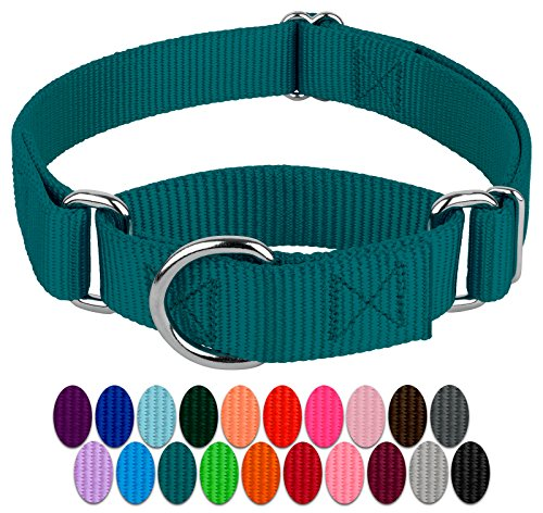 Country Brook Petz | Martingale Heavyduty Nylon Dog Collar (Various Sizes & Colors) (Small, 3/4 Inch Wide, Teal)