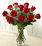 Rose Elegance Premium Long Stem Red Roses 12 Stem Red Roses by 1-800 Flowers