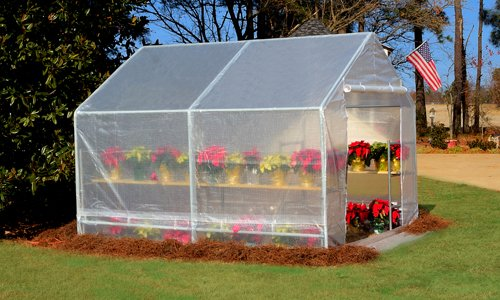 King Canopy GH1010 10-Feet by 10-Feet Fully Enclosed Greenhouse, Clear by King Canopy