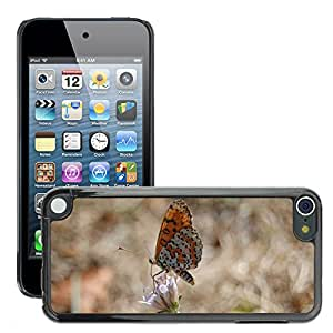 Super Stella Slim PC Hard Case Cover Skin Armor Shell Protection // M00146778 Butterfly Nature Insect // Apple ipod Touch 5 5G 5th
