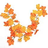 Thanksgiving Decorations Lighted Fall Garland, Thanksgiving Decor Halloween String Lights 8.2 Feet 20 LED, Thanksgiving Gift: more info