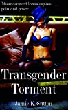 img - for Transgender Torment: Misunderstood Lovers Explore Pain and Power book / textbook / text book