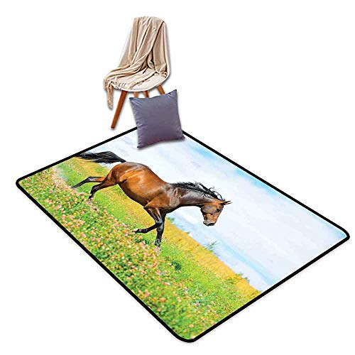 (Bath Rug Equestrian Horse Runs Gallop on Flower Meadow Rural Freedom Animal Picture Quick and Easy to Clean W63 xL102 Baby Blue Apple Green Brown)