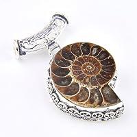 Siam panva Christmas Natural Handmade Ammonite Fossil Gems Vintage Silver Pendant necklace