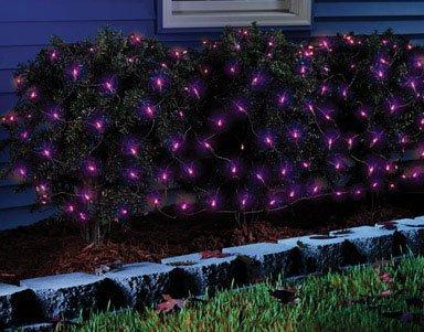 Celebrations 34091-71 Halloween Net Light, Purple