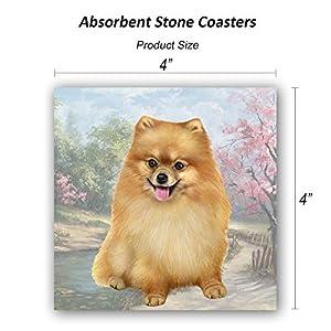 Pomeranian Tabletop Drink Coaster (1) 7